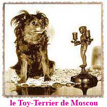 le Toy-Terrier de Moscou